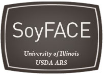 SoyFACE badge, University of Illinois USDA ARS