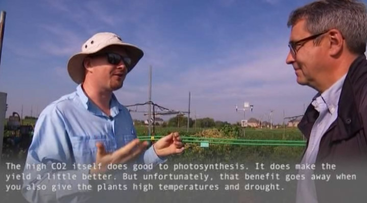 Plant Biologist Andrew Leakey featured on French television channel TF1 on the effects of climate change on crop health and yield.