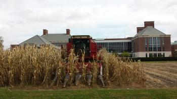 Photo of a combine harvesting corn by the IGB