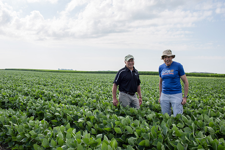 Steve Long and Don Ort stand in soybean field